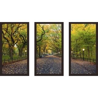 """Through the Trees"" Framed Plexiglass Wall Art Set of 3"