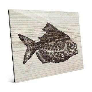 Rustic Piranha Brown' Glass Wall Art