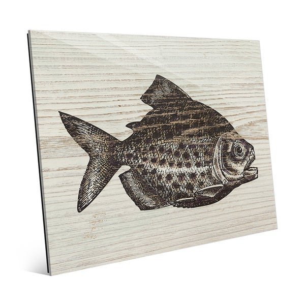 Rustic Piranha Brown' Glass Wall Art
