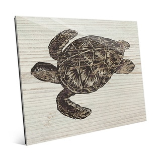Rustic Sea Turtle Brown' Glass Wall Art