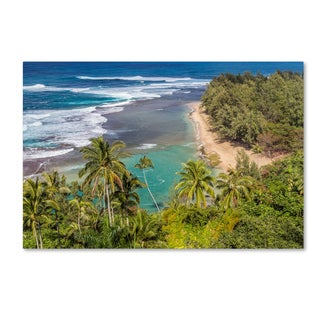 Pierre Leclerc 'Tropical Paradise' Canvas Art