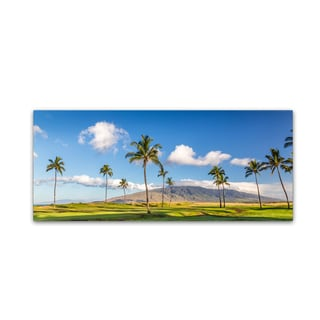 Pierre Leclerc 'Maui Island' Canvas Art