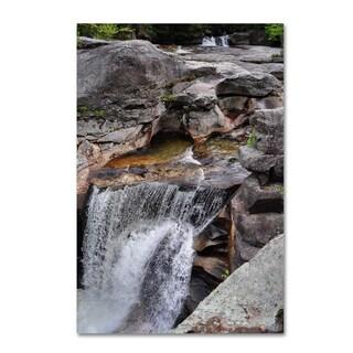 Nicole Dietz 'Notch Waterfall' Canvas Art