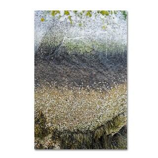 Nicole Dietz 'Layers' Canvas Art
