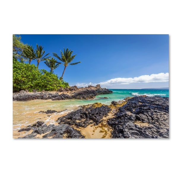 Pierre Leclerc 'Tropical Beach' Canvas Art