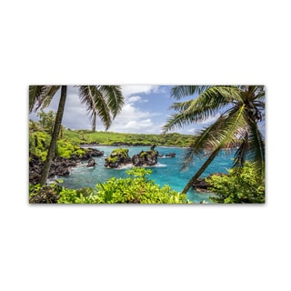 Pierre Leclerc 'Tropical Paradise Maui' Canvas Art