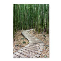 Pierre Leclerc 'Hiking Through the Bamboo Forest' Canvas Art