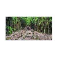 Pierre Leclerc 'Maui Bamboo Forest' Canvas Art