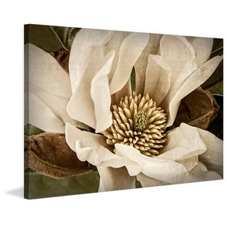 Marmont Hill - 'Classic Magnolia II' Painting Print on Wrapped Canvas