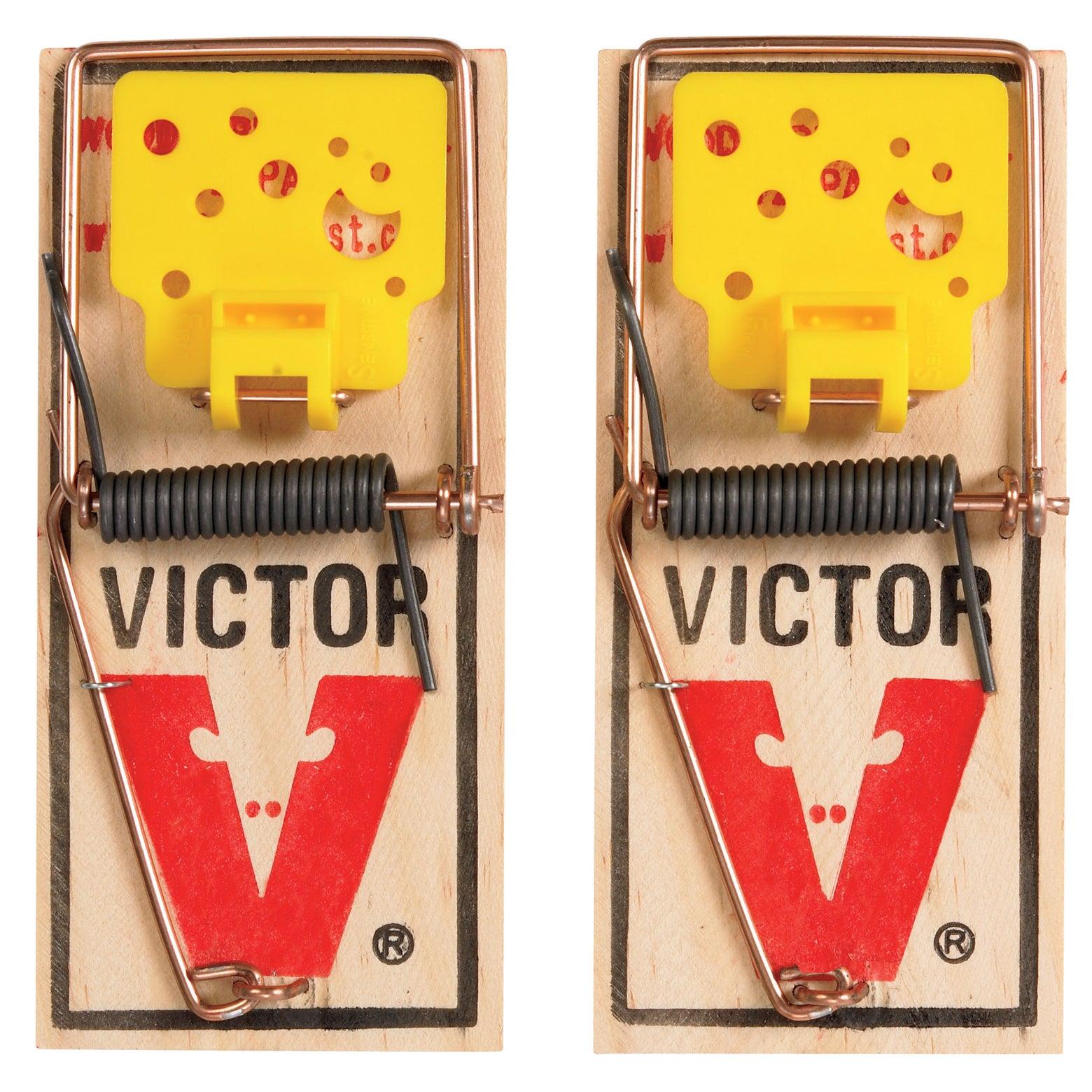 Jensen Victor M035 Easy Set Mouse Traps 2 Count (Trap Mou...