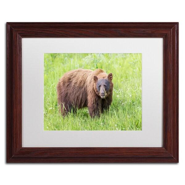 Pierre Leclerc 'Cinnamon Bear' Matted Framed Art