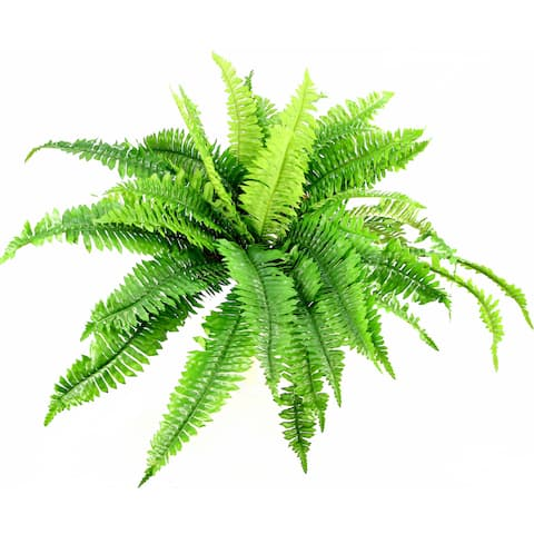 Green Silk 42-leaf Boston Fern Bush
