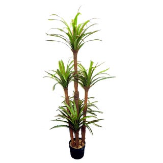 Green Resin 6-foot Artificial Dracaena Tree Plant in Plastic Pot