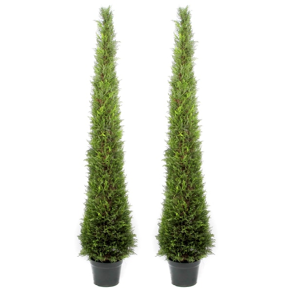 Admired By Nature 6 Foot Artificial Cypress Topiary In Resin Pot Set Of 2