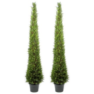 Admired by Nature 6-foot Artificial Cypress Topiary in Resin Pot (Set of 2)