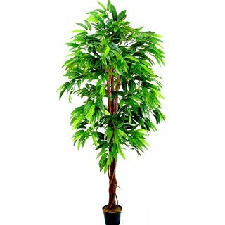 Admired by Nature 6' Artificial Mango Tree in Green Plastic Pot