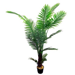 Green Resin 6-foot Artificial Paradise Palm Tree Plant in Plastic Pot