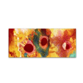 Amy Vangsgard 'Abstract Red Daisies Panoramic' Canvas Art