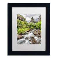 Pierre Leclerc 'Iao Valley Maui' Matted Framed Art