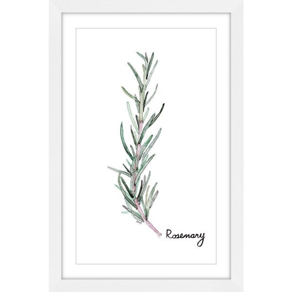 Marmont Hill - 'Herb Rosemary' by Rachel Byler Framed Painting Print - Multi