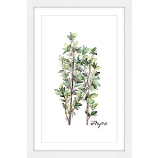 Marmont Hill - 'Herb Thyme' by Rachel Byler Framed Painting Print