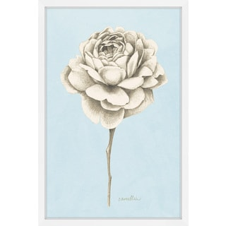 Marmont Hill - 'Botanical Study I' Framed Painting Print