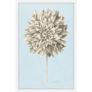 Marmont Hill - 'Botanical Study III' Framed Painting Print