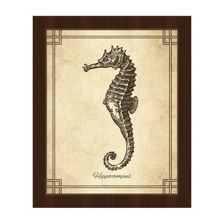 Vintage Seahorse Zoology' Framed Canvas Wall Art