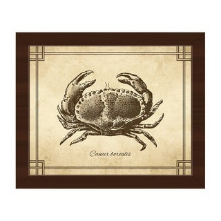 Vintage Crab Zoology Framed Canvas Wall Art