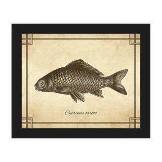 Vintage Carp Zoology' Framed Canvas Wall Art