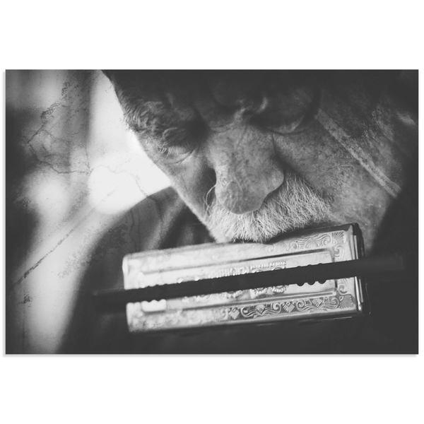 Roswitha Schleicher-Schwarz 'Wolf with Harmonica' Black & White Music Art on Metal or Acrylic