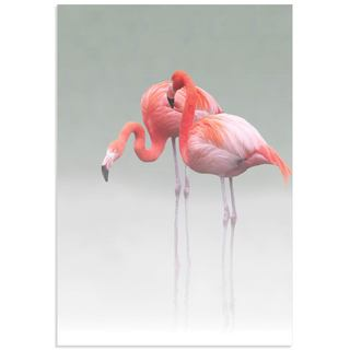 Anna Cseresnjes 'Just We Two Flamingos' Pink Flamingo Art on Metal or Acrylic
