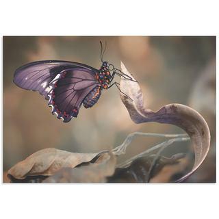 Jimmy Hoffman 'Swallowtail Butterfly' Butterfly Wall Art on Metal or Acrylic