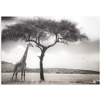 Piet Flour 'Under the African Sun' Giraffe Wall Art on Metal or Acrylic