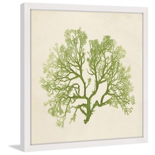 Marmont Hill - 'Chromatic Seaweed VI' Framed Painting Print