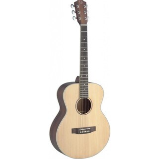 James Neligan ASY-A Mini Asyla Series Travel Acoustic Guitar