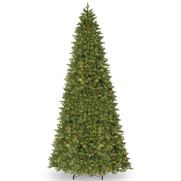 Home Depot Real Christmas Tree Prices: Shop Ridgewood Spruce Slim 14-foot Tree With Clear Lights