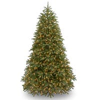 Jersey Fraser Fir 7.5-feet Medium Tree With 1000 White LED Lights