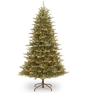 7.5' Asbury Blue Spruce Tree with Clear Lights