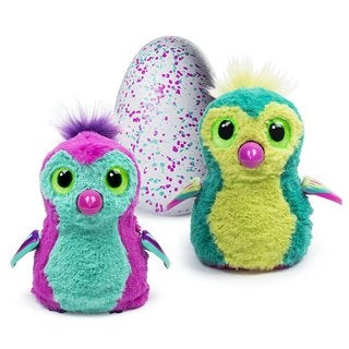 Hatchimals Hatching Egg Penguala by Spin Master Pink/Teal