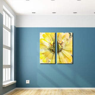 Ready2HangArt 'Painted Petals XCV' 2 Piece Canvas Art Set