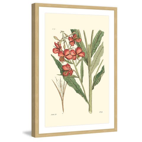 Marmont Hill - Handmade Antique Floral III Framed Print
