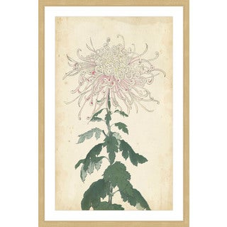Marmont Hill - 'Chrysanthemum IV' Framed Painting Print