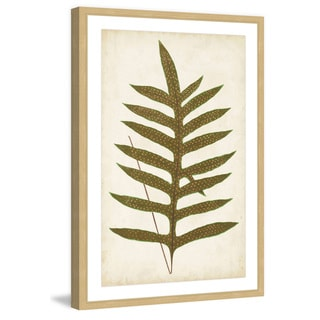 Marmont Hill - 'Fern Family VIII' Framed Painting Print