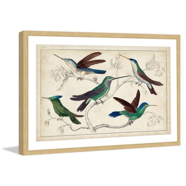 Marmont Hill - 'Hummingbirds' Framed Painting Print