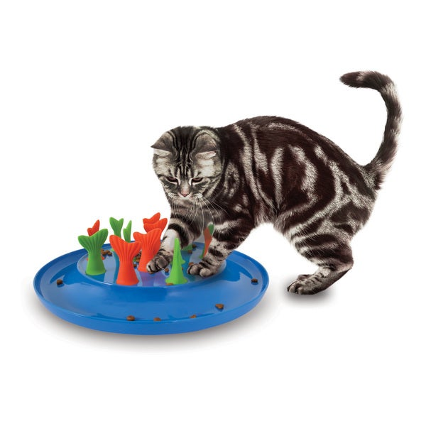 Jackson galaxy go fish cat toy free shipping on orders for Jackson galaxy pet toys