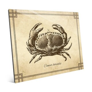 Vintage Crab Zoology' Glass Wall Art