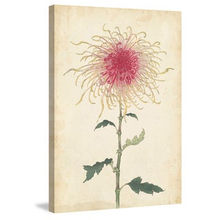 Marmont Hill - 'Chrysanthemum I' Painting Print on Wrapped Canvas
