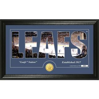 """Toronto Maple Leafs """"Silhouette"""" Bronze Coin Panoramic Photo Mint"""