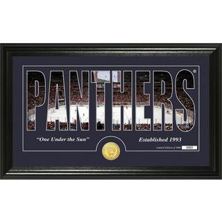 "Florida Panthers ""Silhouette"" Bronze Coin Panoramic Photo Mint"